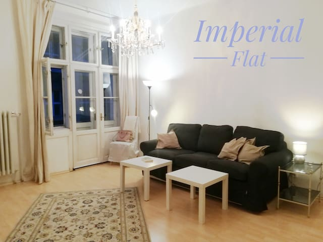 Spacious central 4 room flat (Imperial Flat)