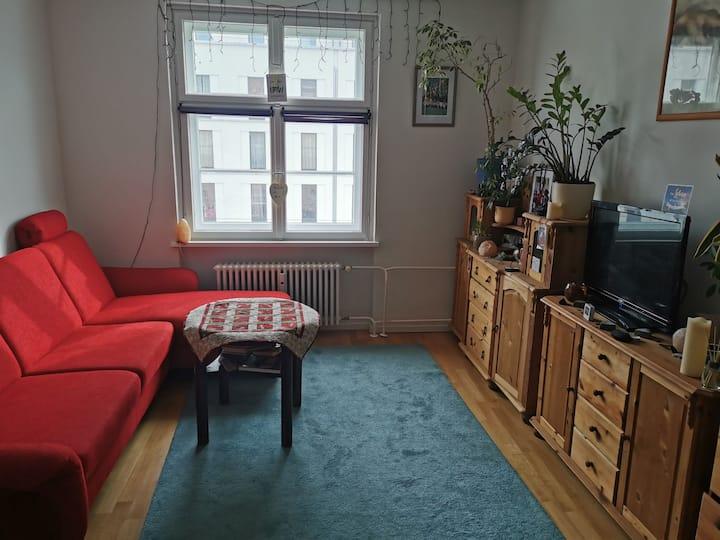 helle 2 Raum Wohnung. verfügbar vom 7.3.-19.3.