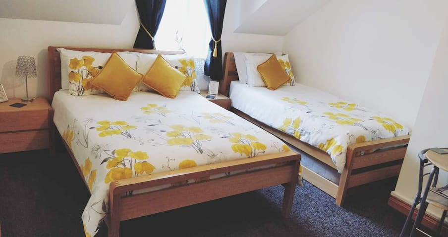 Family Room, Double bed, single bed and single pull out bed