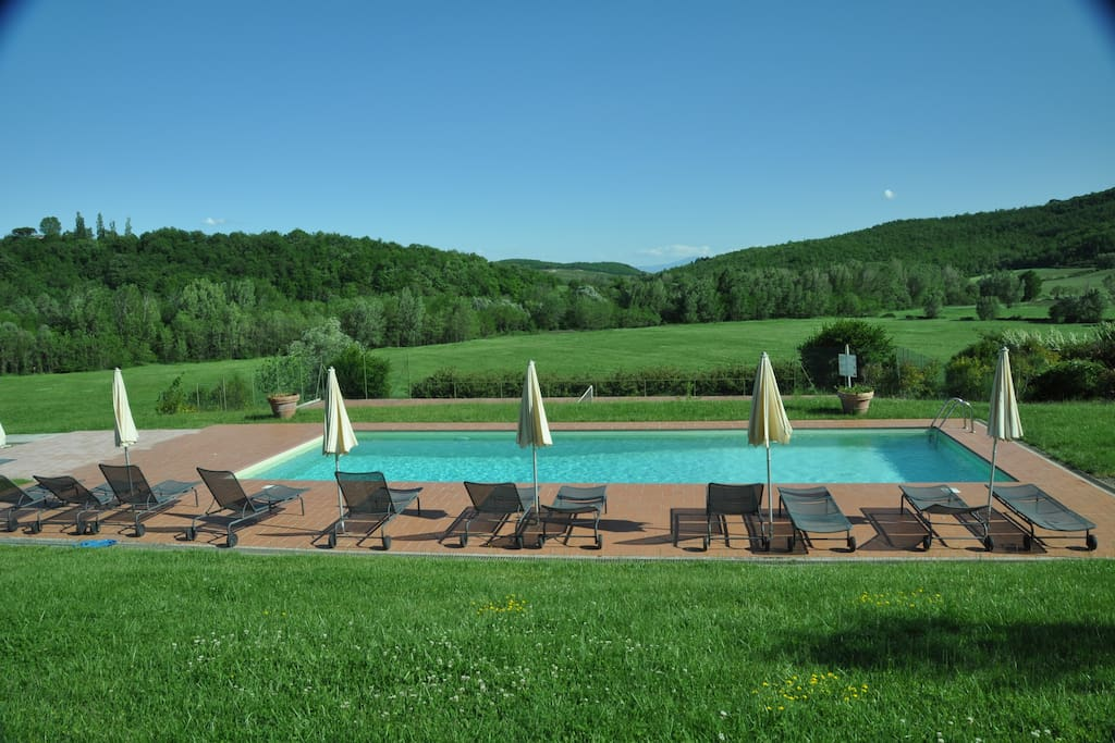 Fields and woods viewed from pool.