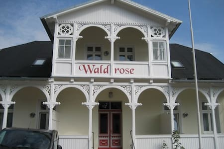 Fewo Jasmund Pension Waldrose