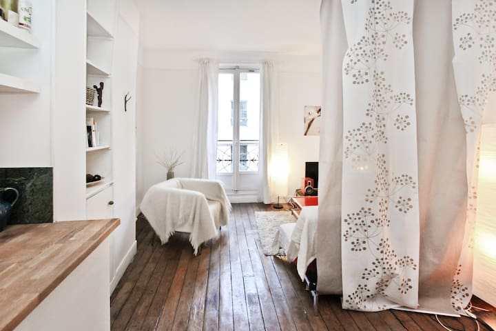 Great flat in the heart of Paris