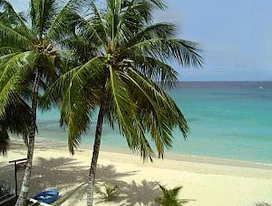 BARBADOS - Walk to Beaches & Shops - Douglas - Appartement