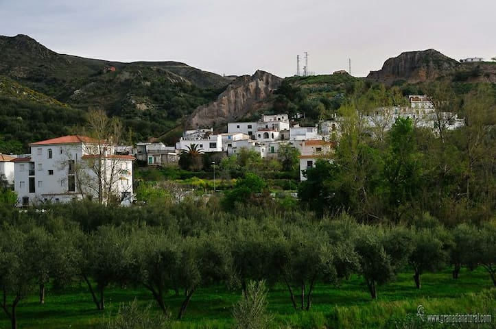 Peace and Tranquility in Las Alpujarras