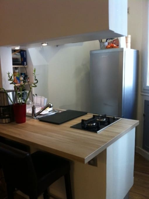 Cuisine équipée : réfrigérateur avec congélateur, cafetière, four à chaleur tournante, grille pain...