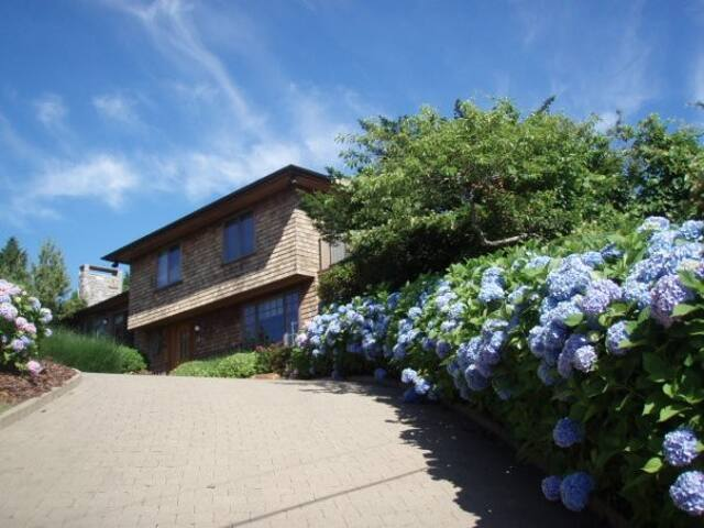 View of house from the hydrangea-lined driveway.