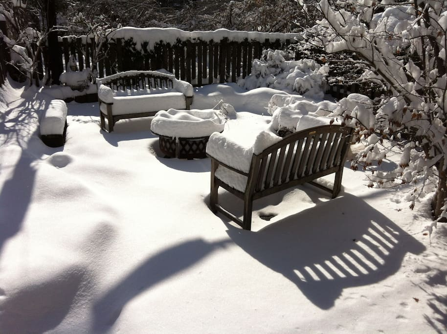 backyard blizzard 2013