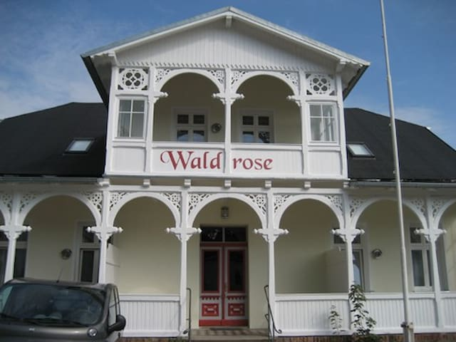 Pension Waldrose - Fewo Wittow - Sellin - Apartmen