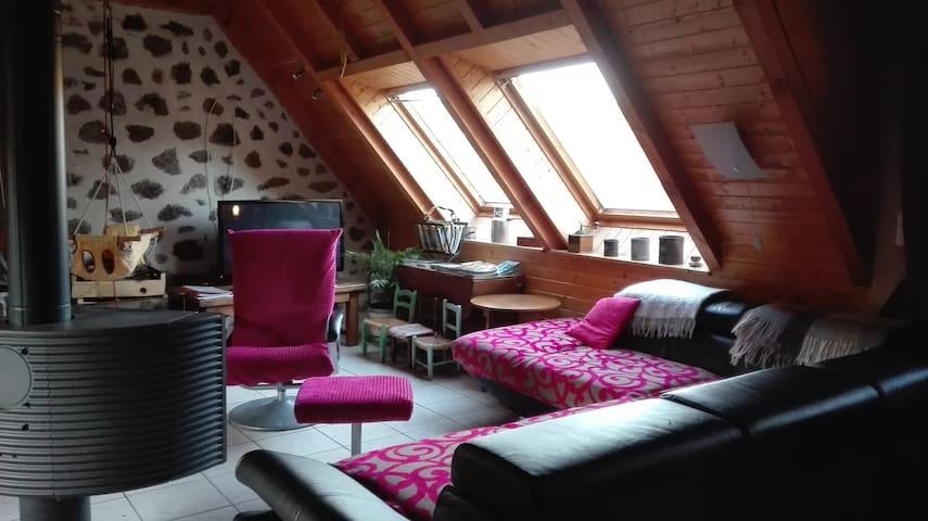 Une étoile dans le Cantal !!! - Saint-Projet-de-Salers - Casa