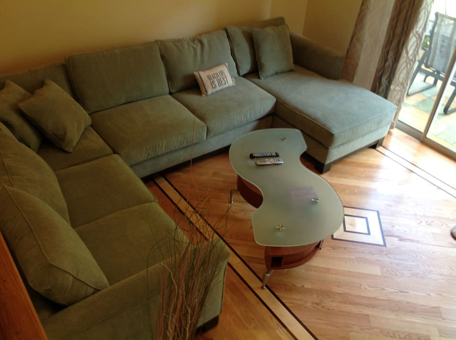 Living Room with a pull out couch