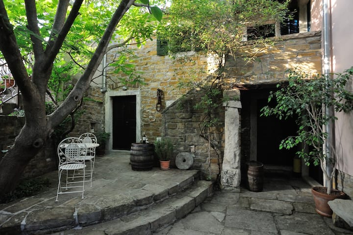 Traditional Istrian Stone House