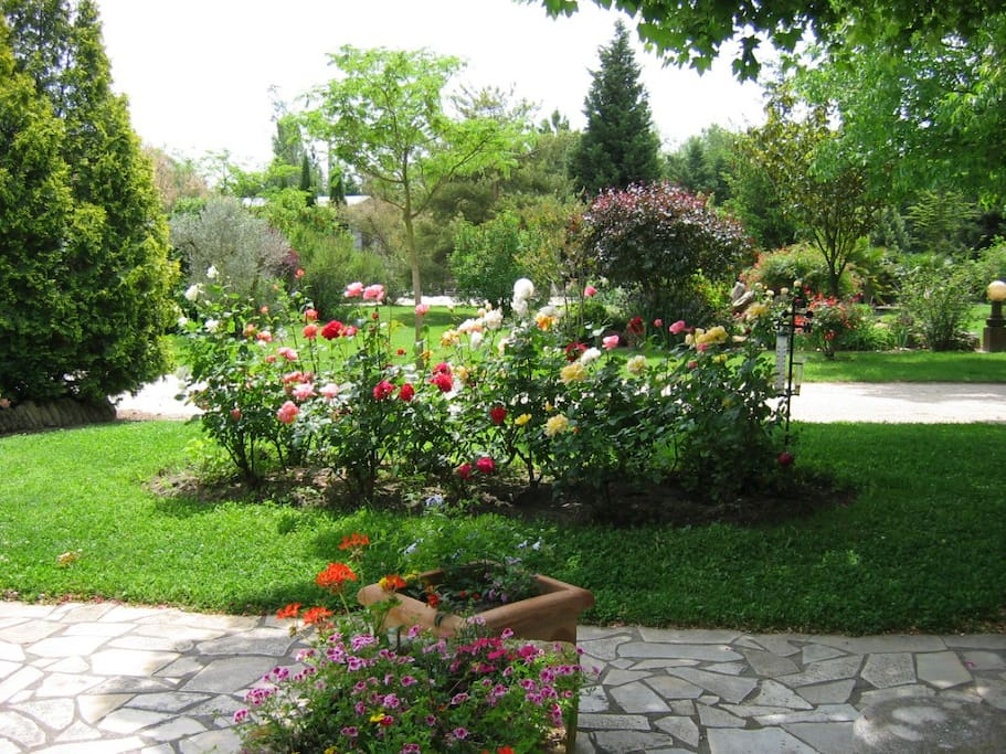 le jardin provencal appartements louer le thor. Black Bedroom Furniture Sets. Home Design Ideas