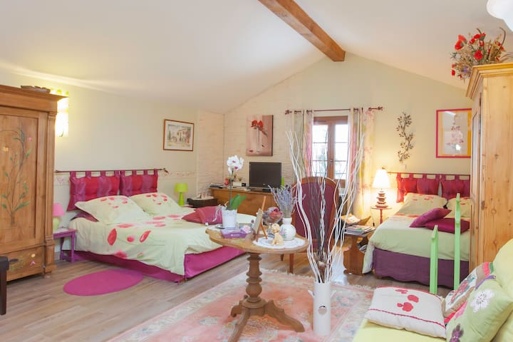 les hortensias - Solgne - Bed & Breakfast