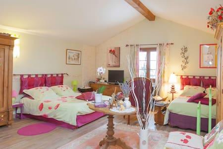 les hortensias - Solgne - Bed & Breakfast