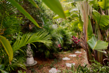 Take your private butterfly trail to your relaxation garden lounge.