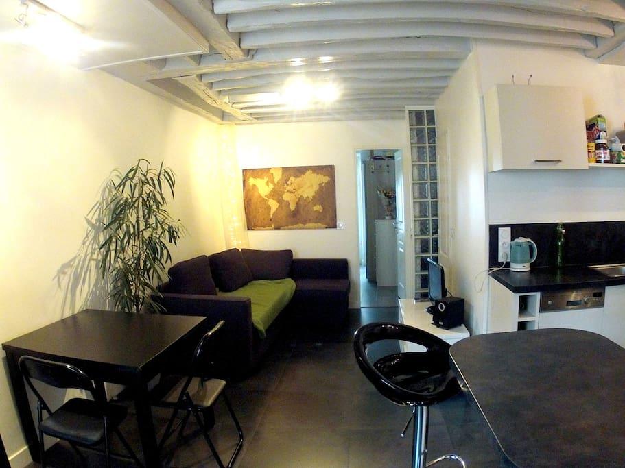Salon TV - avec cable et chaine hifi