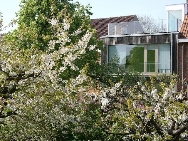 Contemporary house, green & arty - Watermael-Boitsfort - House
