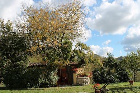 Country House Il Biroccio, Capriolo - Urbino