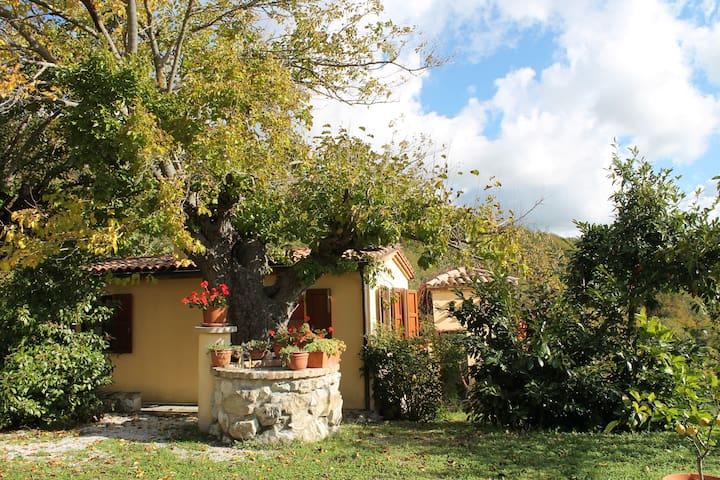 Country House Il Biroccio, Capriolo - Urbino - Apartemen
