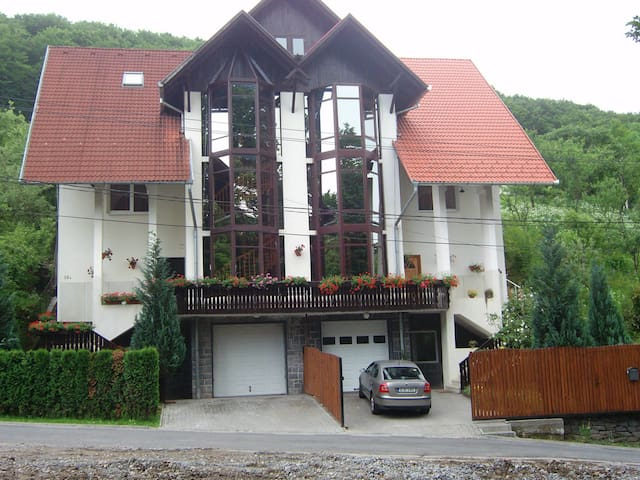 Anette House - Sovata - Guesthouse