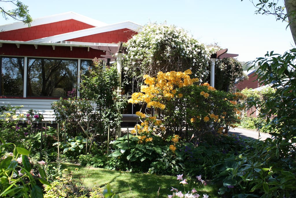 Our lovely front garden area creates a warm welcome to our home.