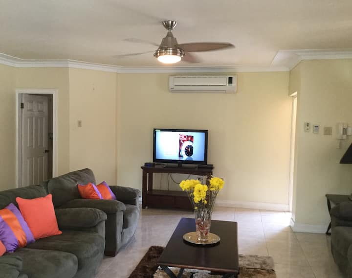 Fully furnished spacious one bedroom apartment