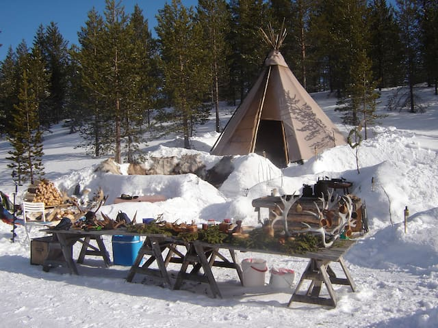 Stay in a Tipi in Swedish Lapland!