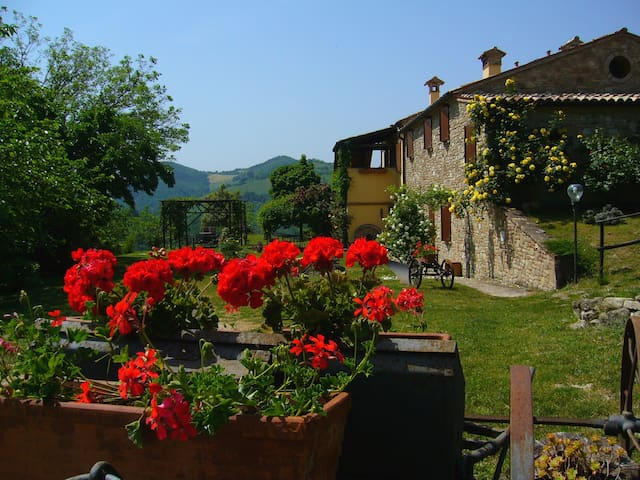 Country House Il Biroccio, rooms - Urbino - Inap sarapan