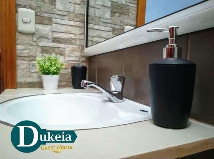 Dukeia, Colonia Maya, room 2
