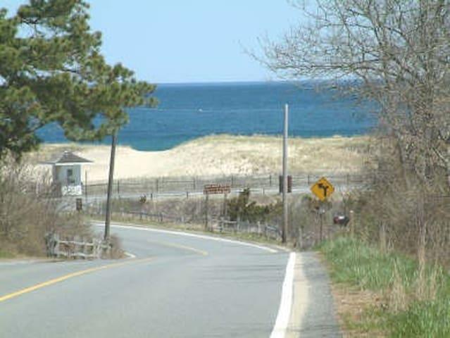 Walk to Coast Guard Beach!