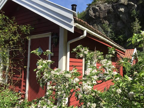 Mammas hotell - The Cottage in the garden