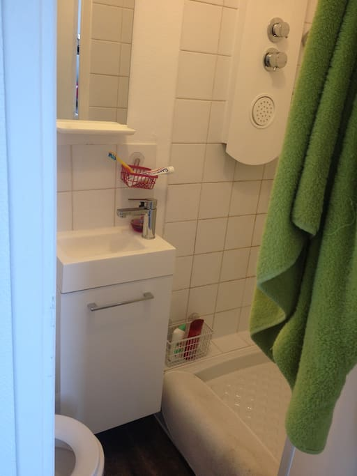 The tiny bathroom, but all-equiped.