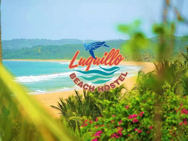 Luquillo Beach Hostel- Leatherback Men's Dorm