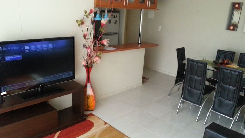 New Apartment Playa Chinchorro