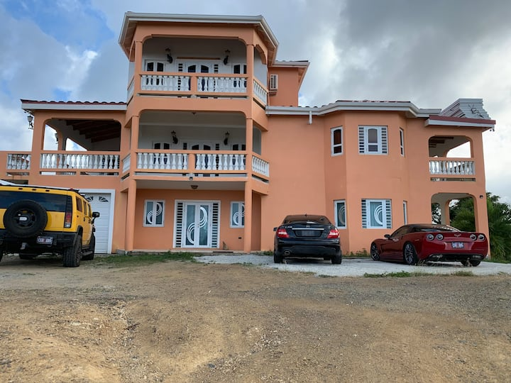 Nuvo  House Apt