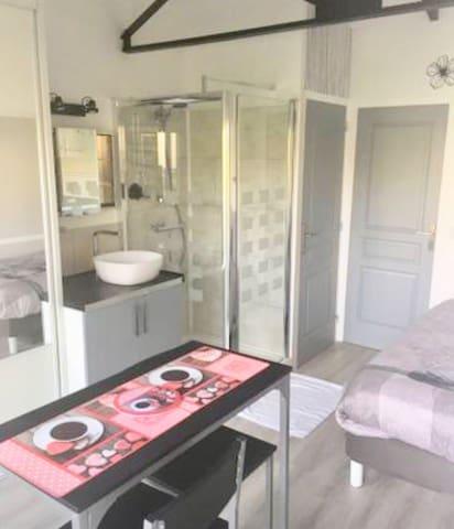 À gauche Vue placard coulissant  miroir.                  Lavabo ,douche  porte wc  et porte accès buanderie