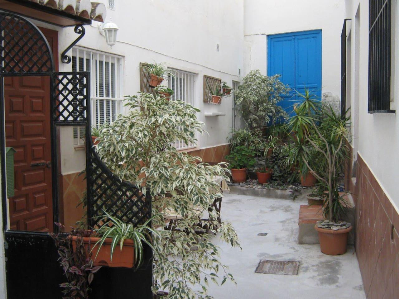 Patio area, Bajo 4, Canalejas 26, La Herradura