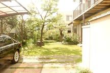 Summer garden, free parking 夏の庭と駐車場