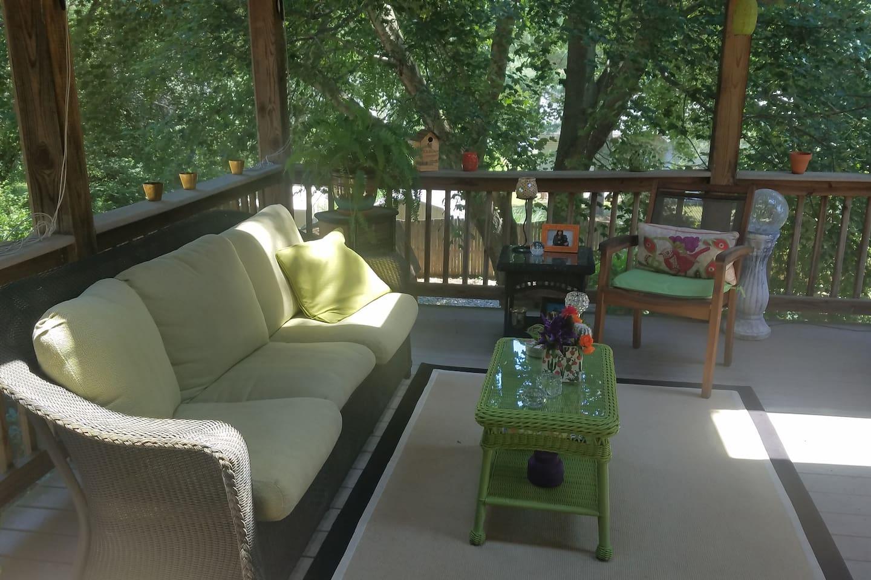 Beautiful screen in porch