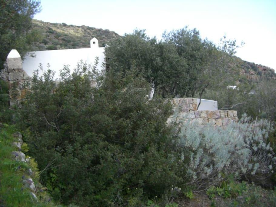 immersa nel verde la villa gode di fresco ed aria anche nelle giornate più torride !