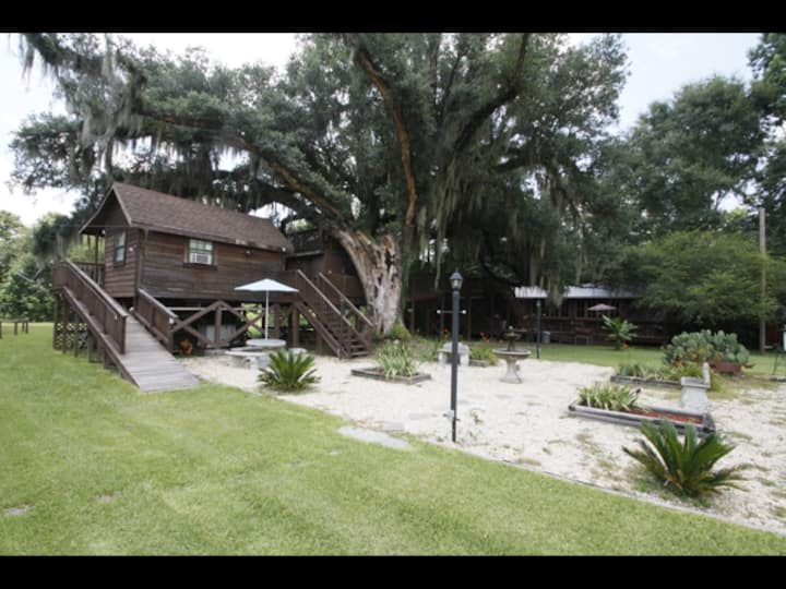 Multi level Swiss family Robinson Treehouse
