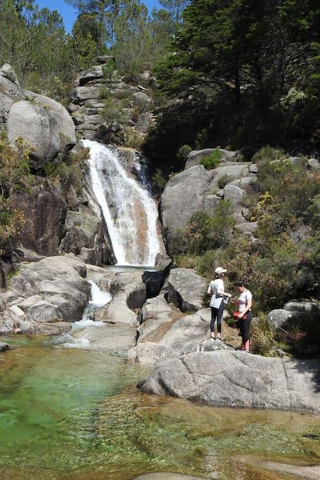 Waterfalls,ponds everywhere
