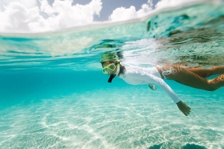 Free Ticket to Seablaster Snorkeling Cruise