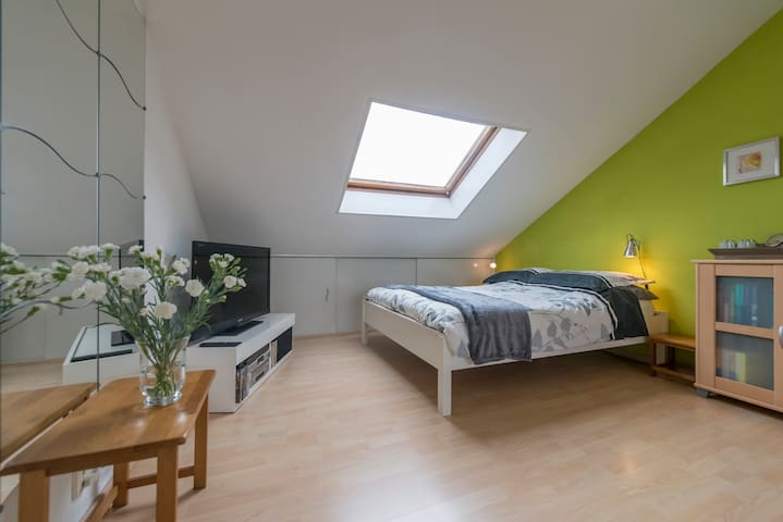 Cosy 2 person bedroom with parking - Maastricht - House