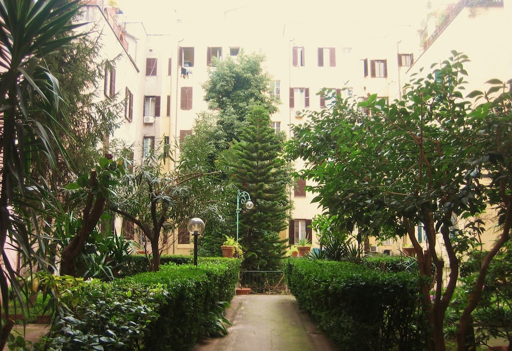 The garden inside the building