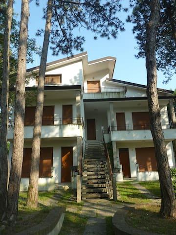 Accogliente appartamento mansardato Lignano Pineta