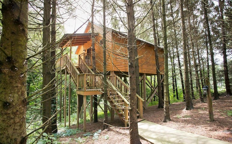 Romantic Treehouse Getaway with Treetop Views