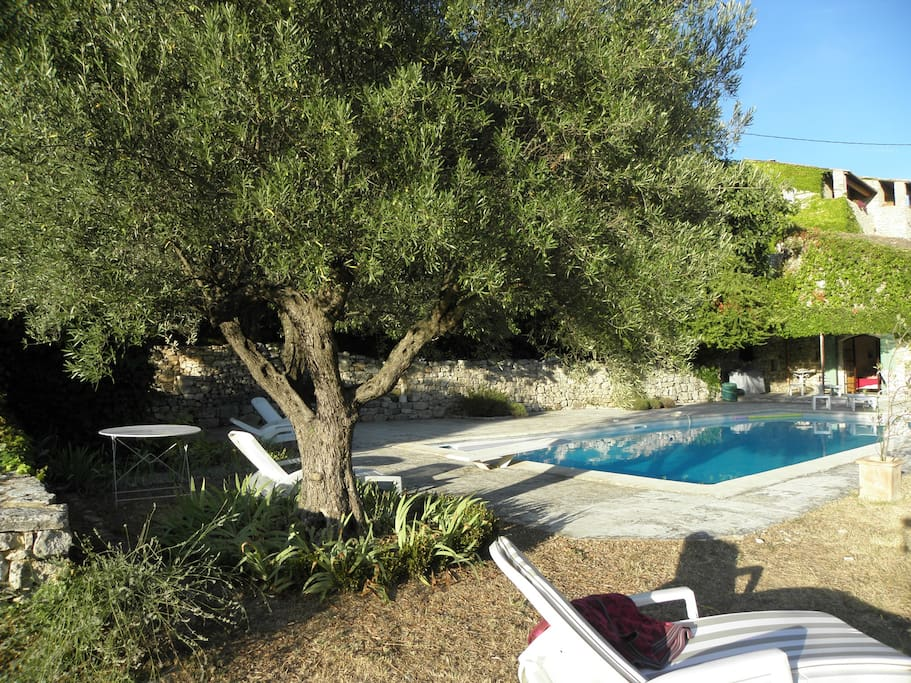 Great villa with great swimming pool in a great garden!