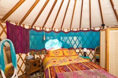 Sleep Under the Stars in Ojai !