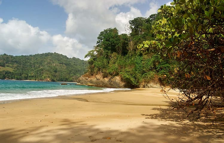Erasmus Cove's private beach